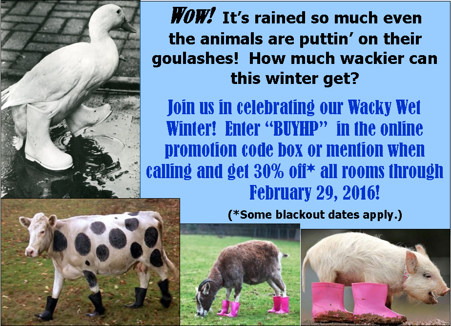 Wacky Wet Winter Special with blackouts